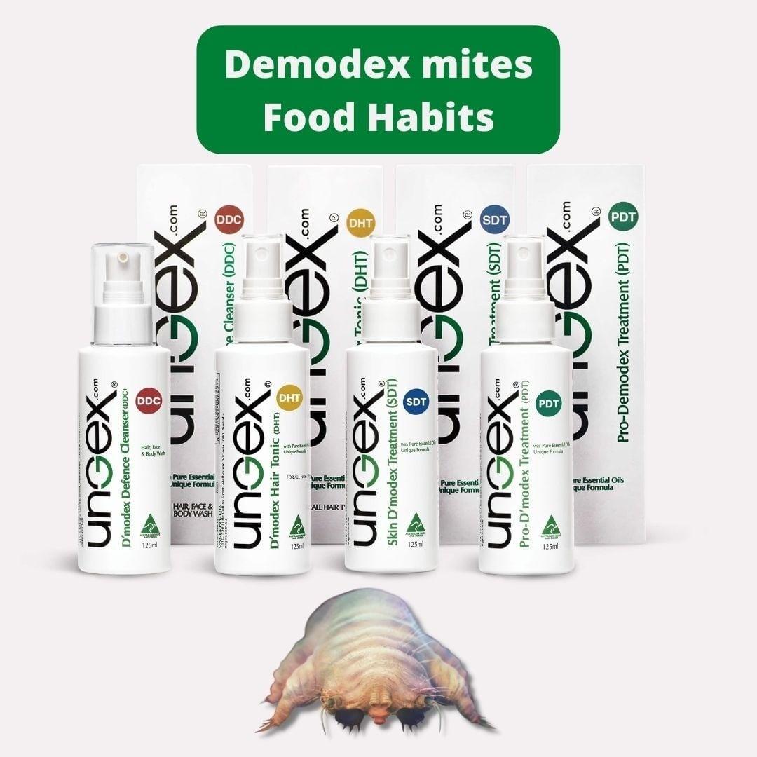 What do Demodex mites eat? 🤔🤔