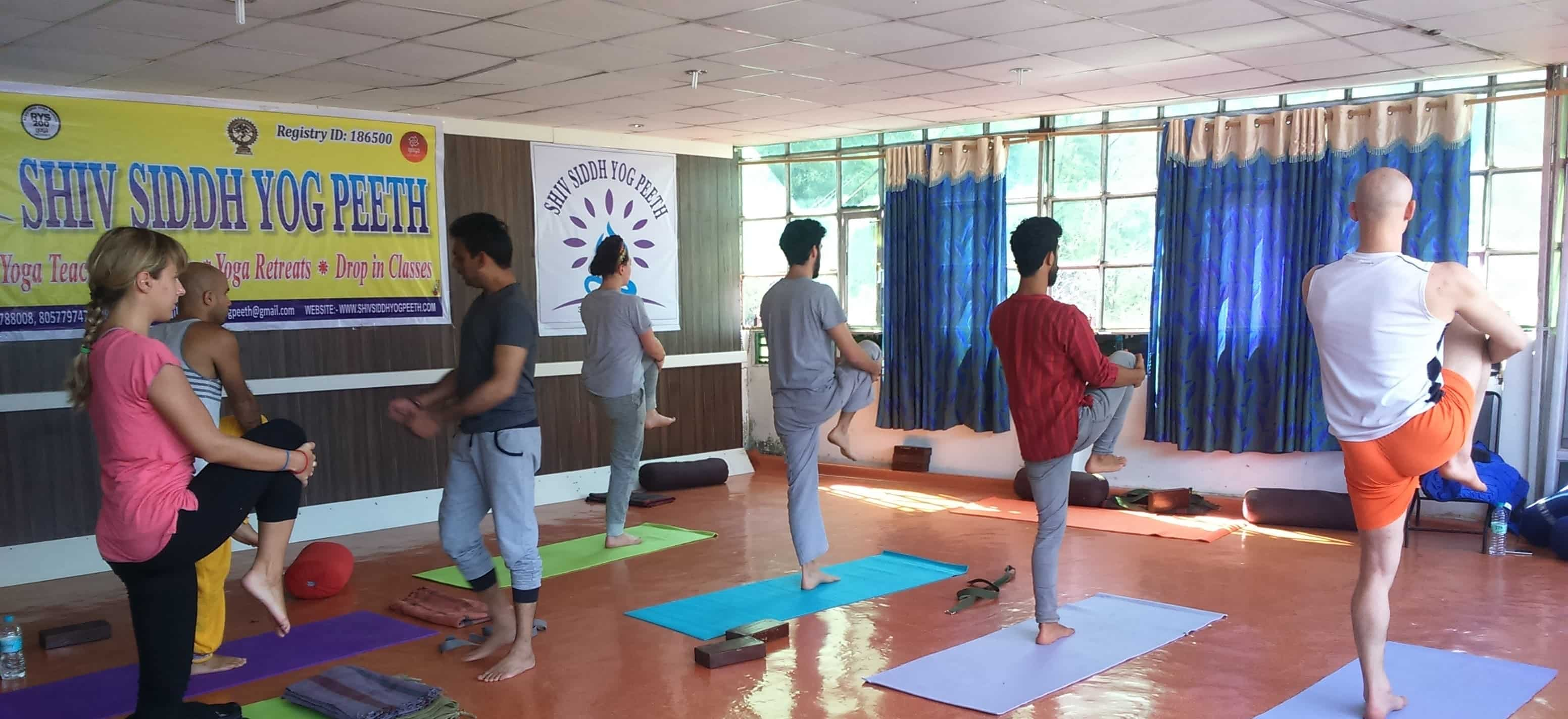 200 Hour Hatha Yoga Teacher Training School in Rishikesh India