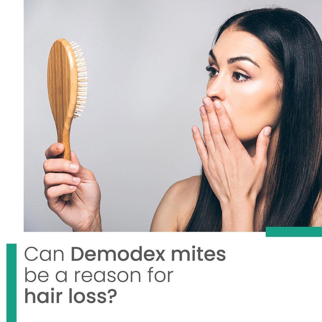 Can Demodex mites be a reason for hair loss?