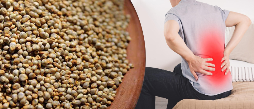 Benefits of Bajra for Kidney Patients
