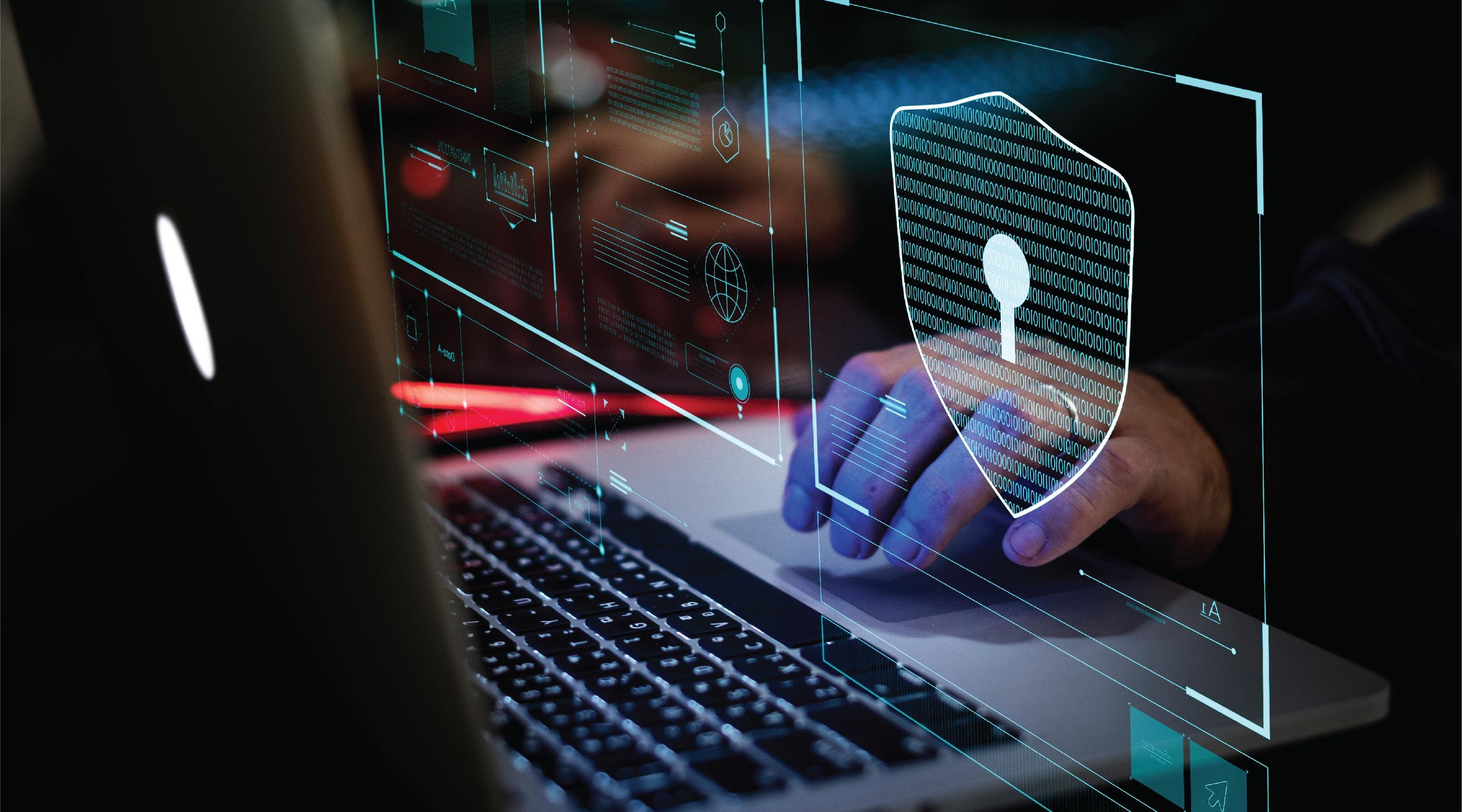 Information Security and Privacy Protection NZ