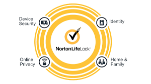 How to do a Norton password reset?