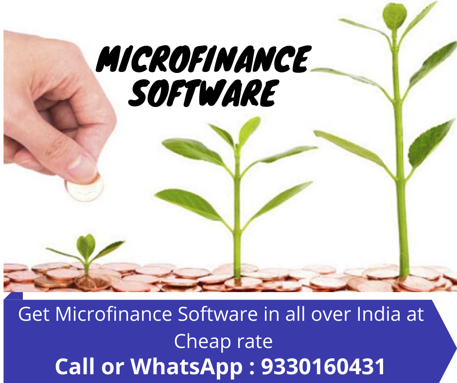 Online Microfinance Software Company