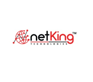 Digital Marketing Company In India | Netking Technologies