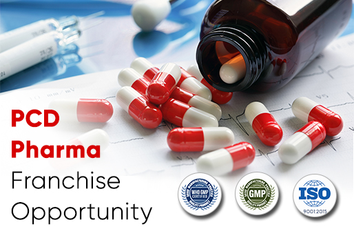 Searching for List of Top 10 Pharma Franchise Companies?
