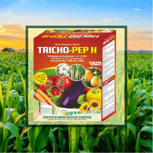 Looking For Trichoderma Harzianum, Buy Now