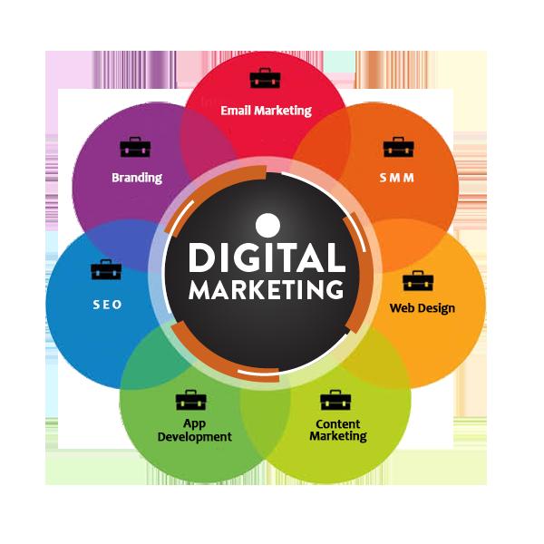 Best Digital Marketing Services in Noida, India