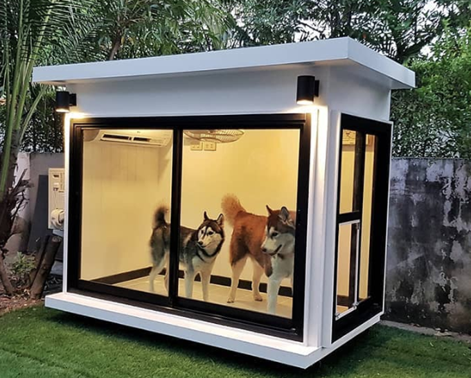Dog House at Best Price