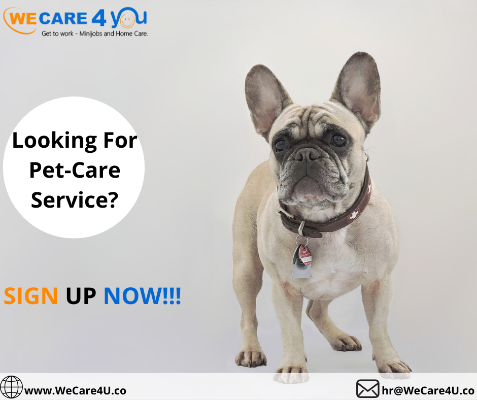 Providing jobs in dog care ?