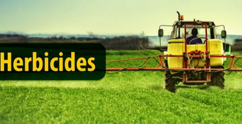 Weed Control and Herbicides - Peptech Biosciences