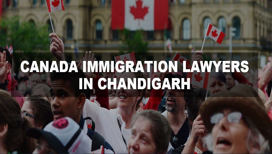 Canada Immigration Lawyers in Chandigarh