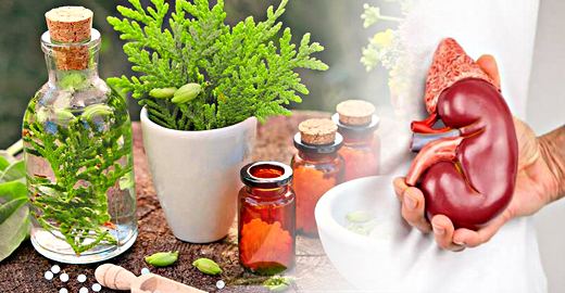 Kidney Shrink and Swollen Treatment in Ayurveda