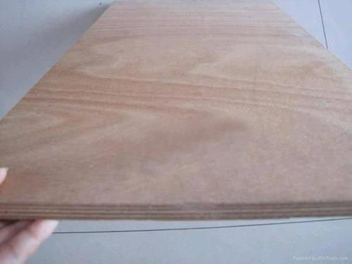 BB/CC Grade Plywood54