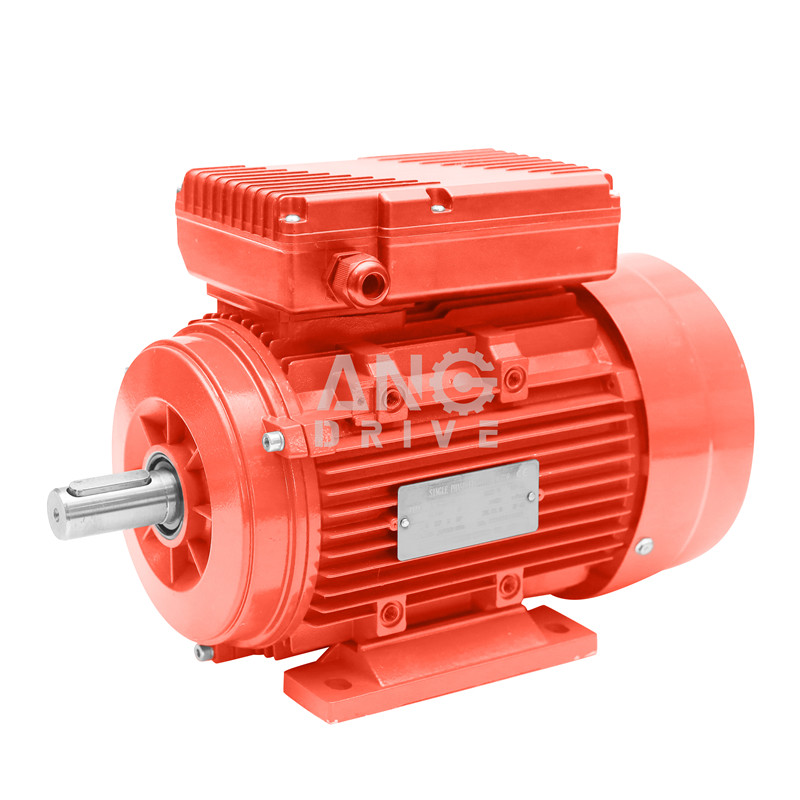 AC Induction Electrical Engine Three Single Phase Asynchronous IEC Electric Motor74