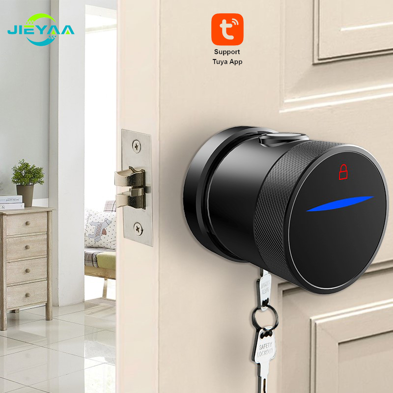 Tuya Smart Life App Fingerprint Door Lock3
