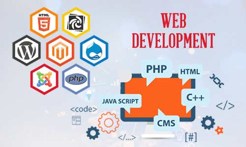 Web Development & Website Service Provider Company In India & USA